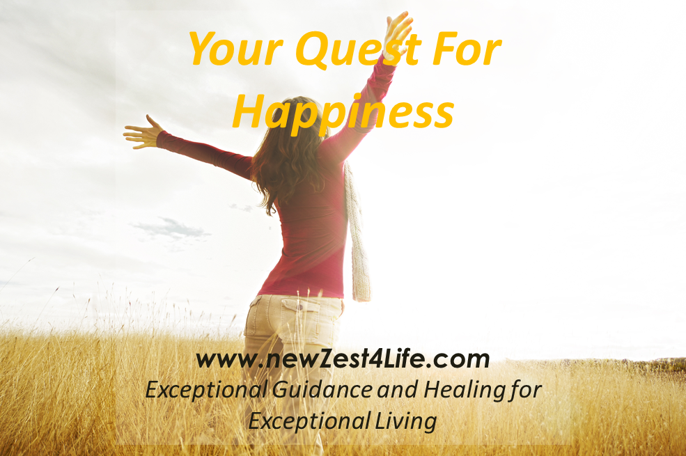 https://www.newzest4life.com/the-quest-for-happiness/